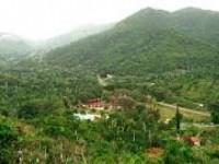 PINCELADA CUBANA